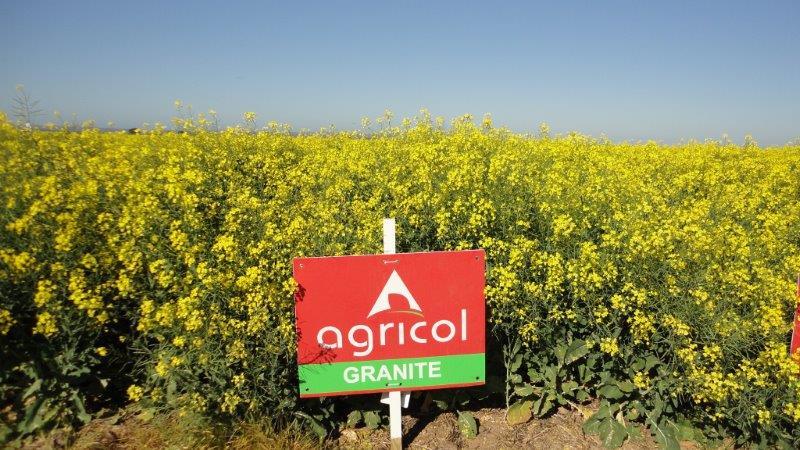 Agricol-SSK-Wintergraandag (1)